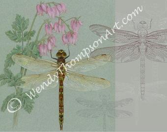 Women Lady Dragonfly Libellula Print Soft Large Summer Spring Autumn Wrap Scarf