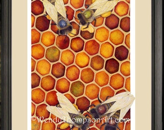 Honey Bees with hive Open edition print from original colored pencil painting ~ zoology Nature art, home decor, entomology wings bugs