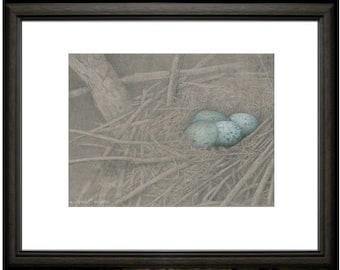 CROW's Nest ~  Open edition print from original colored pencil drawings ~ Fine detailed Nature art, home decor, corvid art.
