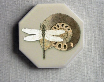 Dragonfly with Ammonite on 2-inch octagonal tile, geology fossil entomology,  home decor Kitchen magnets original design