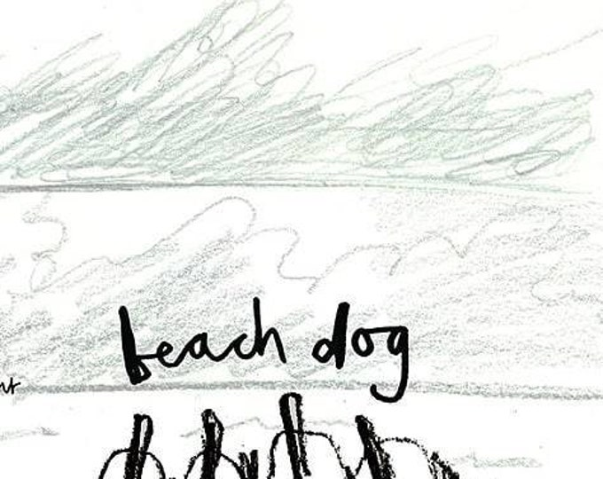 Beach Dog : illustrated short storybook