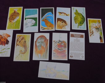 Vintage 1978 BROOKE BOND Collectible Tea Cards - WWF Vanishing Wildlife - Free Postage Australia Wide