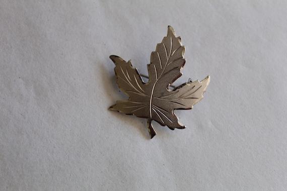 Vintage Stuart Nye 1 34 Oak Leaf Pin