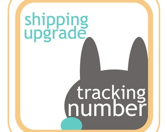 Tracking number - shipping upgrade - add tracking number to your order