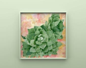 Succulent Original Watercolor