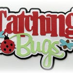 Catching bugs title premade paper piecing 3d die cut for scrapbooks cards planner project life by my tear bears kira