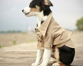 The Westerly Dog Trench Coat