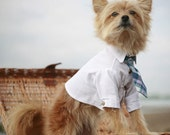 The Rover Dog Tie (shirt sold separately)
