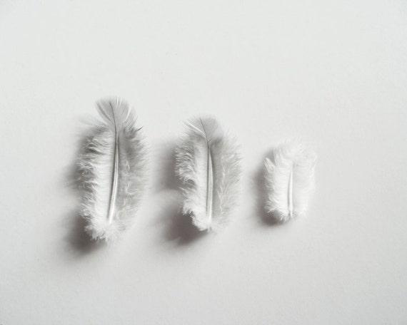 Veren In Huis : Veren fotografie grijs zwart wit minimalistische decor van het etsy