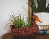 Vintage Wicker Duck Basket with four LIVE air plants, air plant decor, gift for women, gift for plant lady, friend Gift, Christmas gift