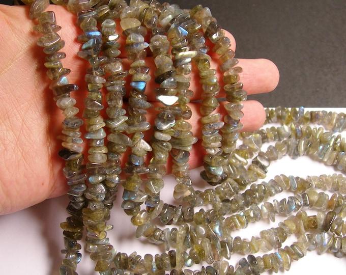Labradotite gemstone - bead - full strand - chip stone - A quality - NRG64