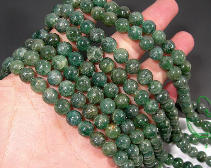 Green apatite - 9.5mm round beads - full strand - 44 beads - RFG1942