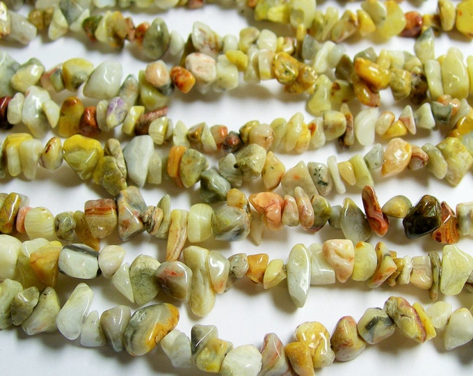 Crazy lace agate -  chip stone beads  -1 full strand - 36 inch - PSC154
