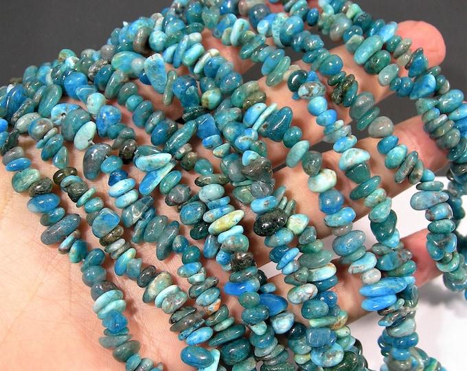 Blue Apatite -  gemstone pebble chip - 35 inch - PSC267