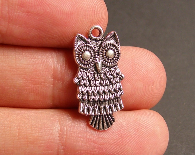 12 owl charms -  12 pcs - owl silver tone charms - ASA57