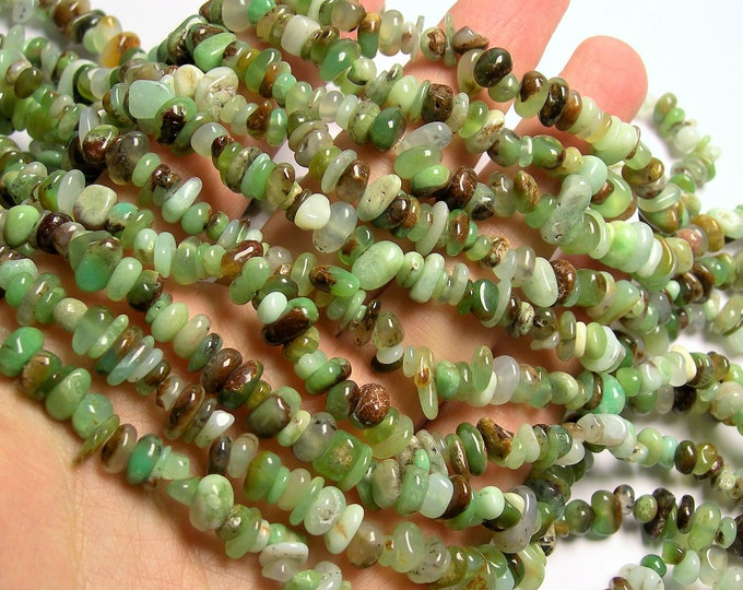 Chrysoprase - 36 inch strand - pebble - chip stone  - chrysophrase - PSC409