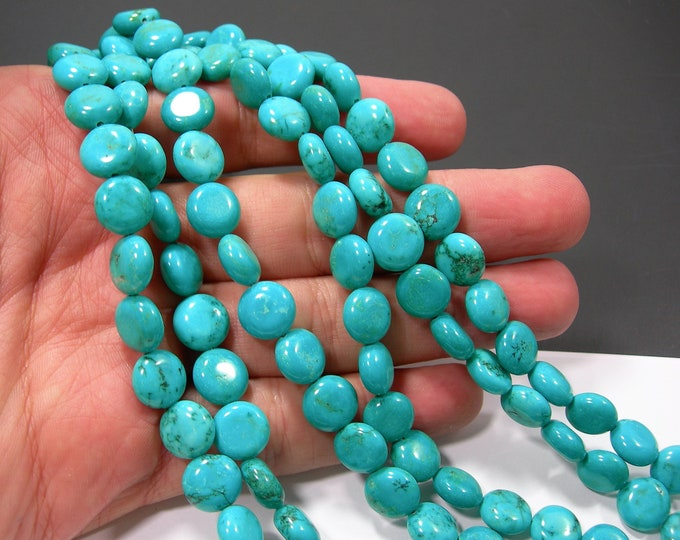 Howlite turquoise - 10mm Puff coin beads - full strand - 40 pcs -  RFG2113