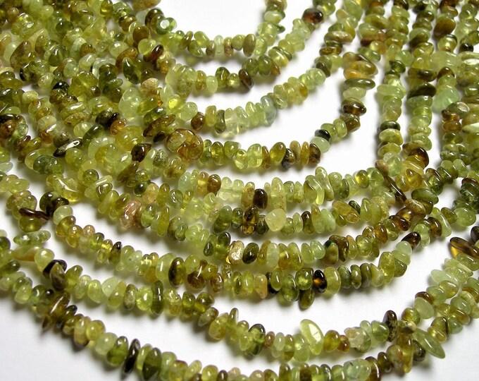 Grossular Garnet - bead - 34 inch strand - chip stone - A quality - 4mm - Green Garnet - PSC328