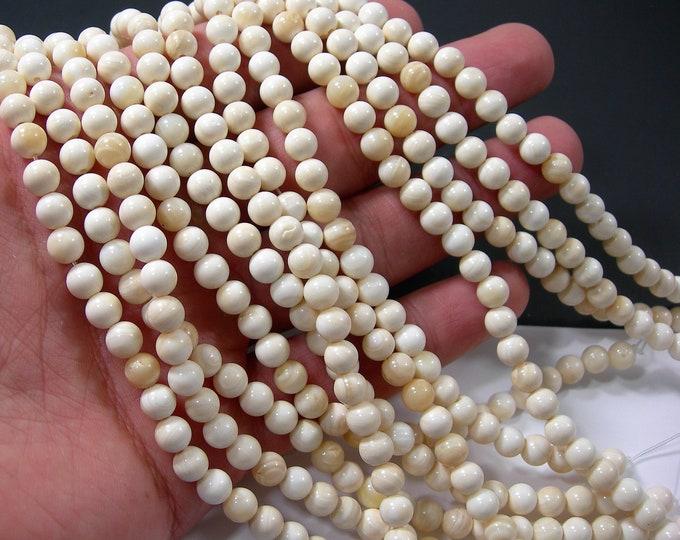 Tridacna 6mm round - 67 beads - full strand - Genuine Tridacna - cream -  RFG401