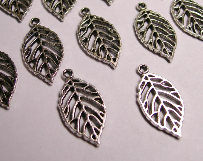 12 Silver Leaf color charm hypoallergenic-  12 pcs -silver leaf charm - NAZ39