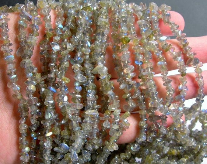 Labradotite gemstone bead -  36 inch full strand - chip stone - AA quality - PSC251