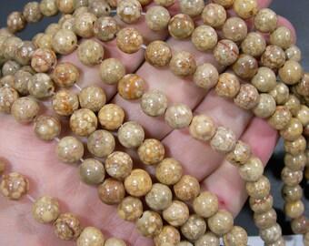 Maifanite Fossil Jasper - 8mm  round beads - 1 full strand - 47 beads - RFG727