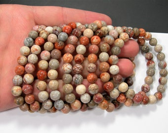 Red fossil coral jasper - 8mm round beads - 23 beads - 1 set - A quality - HSG198