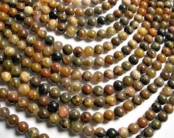 Petrified wood - 8mm round beads -1 full strand - 49 beads - Arizona petrified wood agate - RFG1246