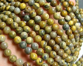 Fossil coral Jasper - 8mm  round beads -1 full strand - 49 beads -RFG709