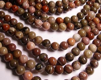 Petrified wood - 10mm round beads -1 full strand - 40 beads - AA quality - RFG573