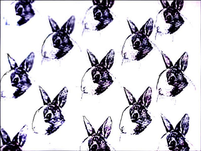 "Rabbit Fabric Dutch Rabbit Fabric/BEST All Cotton Ever ""Feels Like  Silk""/Northcott/Hot Diggity Dog Fabric/Craft Supplies & Tools/Rabbit Gift"