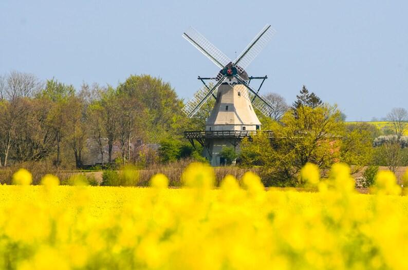 Unewatt Mill  Fine Art Landscape Photography Print image 0