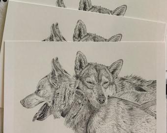 Dogsledding mushing winter postcards