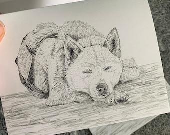 Blank notecards 5 pack dogsledding mushing husky