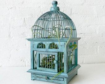 Air Plant in Blue Bird Cage - Distressed Teak LIVE Garden