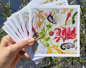 "Card Set of ""On the Beach"""