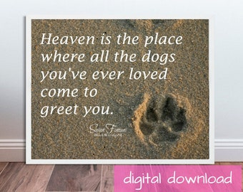 Pet Memorial Photo, Heaven is the Place Where all the Dogs You've Ever Loved Come to Greet You, beach dog, lost dog, rainbow bridge