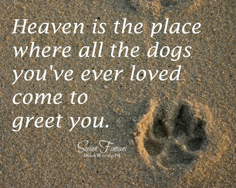 Heaven is Paw Print in the Sand 5x7 8x10 Printed Dog image 0