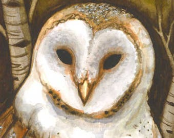Barn Owl Print (Matted)