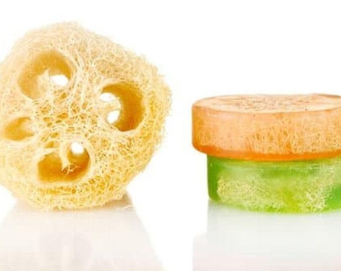 Stress Relief Loofah Soap, Earthy Herbal Blend With Citrus & Mint
