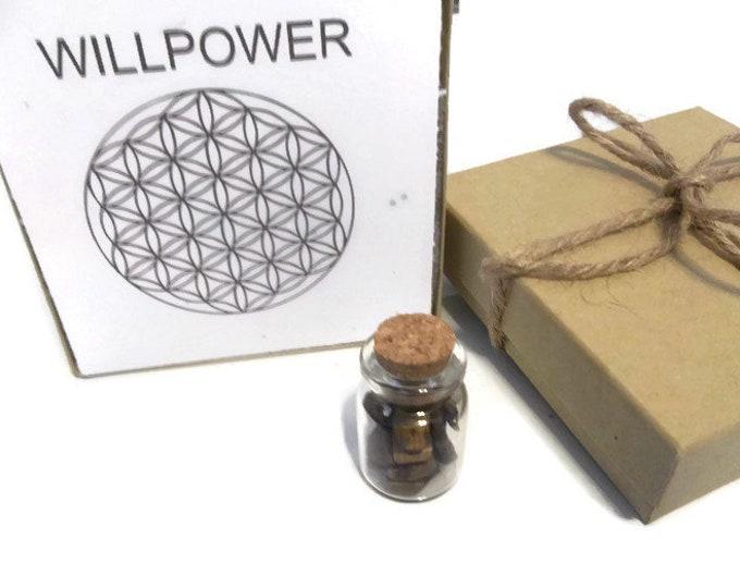 Willpower Crystal Grid Set, Tiger Eye With Clear Quartz, Crystal Bottle Stones