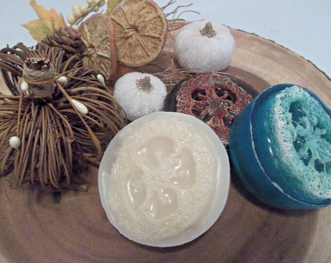 Pumpkin Chai Loofah Soap, Exfoliating Shower Scrub Sponge
