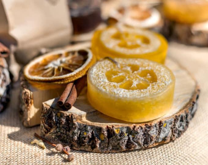 Christmas Memories Loofah Soap, Exfoliating Loofah Soap For Dry Skin, Cinnamon Peppermint Orange