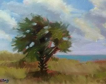 Original Plein Air Oil Painting Beach Dunes Before Sunset