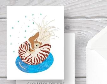 Nautilus Card-Chambered Nautilus-Nautilus Art-Ocean Card-Nautilus Shell-Inner Tube Card-Nautilus Gift-Pool Gift-Nautilus Greeting