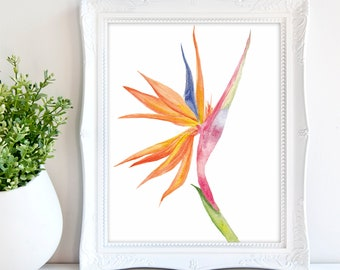 Bird of Paradise flower Watercolor Art Print - Tropical flower watercolor painting, botanical wall art, floral wall decor