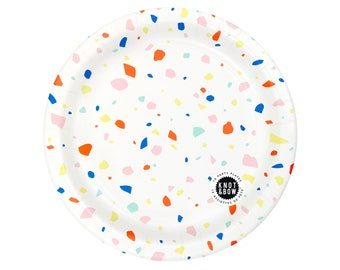 Party Plates   Rainbow Chip   10 large plates per pack