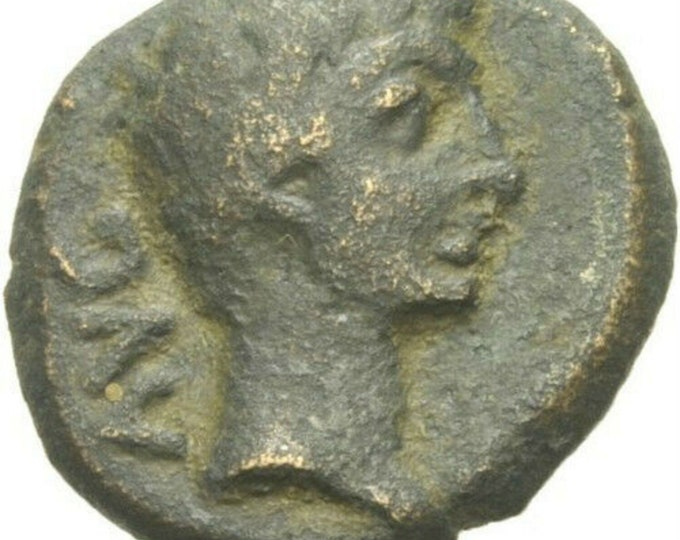 Vintage Augustus Philippi Macedonia Ancient Roman Coin Colonists With Two Oxen i1400