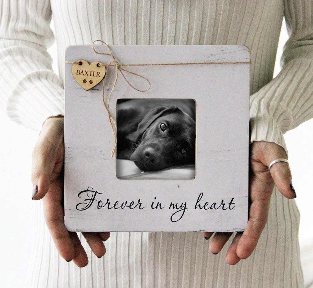 Pet Memory Picture Frame Pet Picture Frame Forever In My