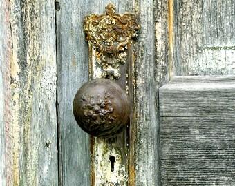 Victorian Door Plate and Knob